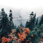 Feast. – Autumn