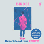 Birdee – I Can't Fight The Feeling (Roisto Remix)